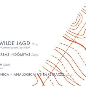 Die Wilde Jagd / Abstract trips Vol. III
