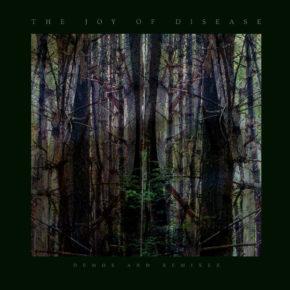 "B.F.E.45 – JAMES PLOTKIN ""The Joy Of Disease Demos + Remixes"" LP + CD (Sold Out)"