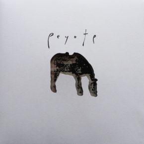 """B.F.E.56 - O YUKI CONJUGATE """"Peyote"""" LP (Sold Out)"""